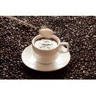 커피 403
