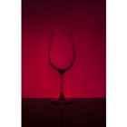 와인 80