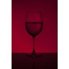 와인 79