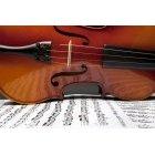 바이올린 198