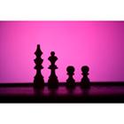 체스 77