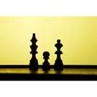 체스 69