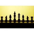 체스 67