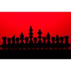 체스 73
