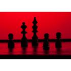 체스 71