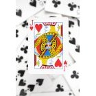 카드 25