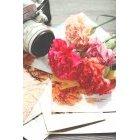 꽃 1338