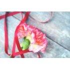 꽃 1360