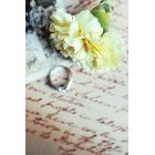 꽃 1543