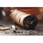 담배 458