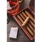 담배 455