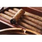 담배 443