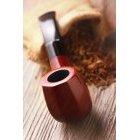 담배 576