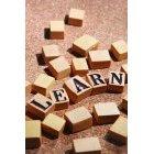 교육 1404