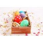 계란 267