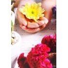 꽃 2907
