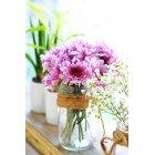 꽃 2610