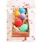 계란 244
