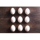 계란 285