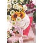 꽃 3154