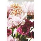 꽃 3141