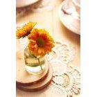 꽃 3461